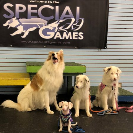 special-games